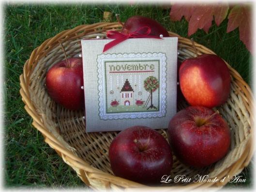 pommes en novembre2