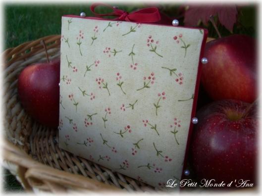 pommes en novembre3